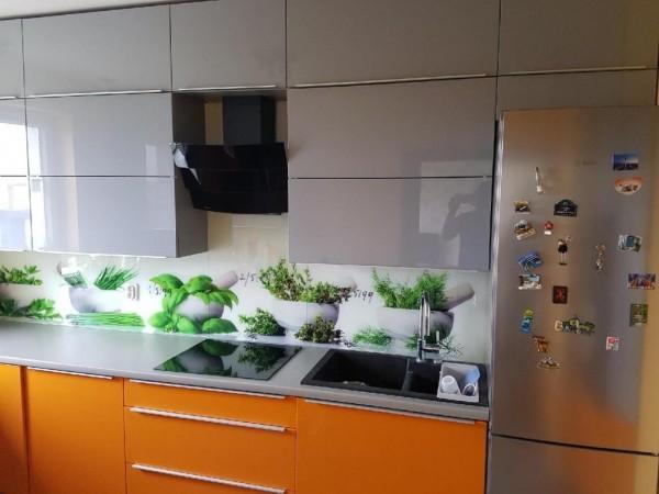 terminex-kuchnia